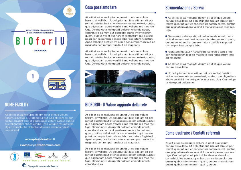 Brochure_Sara
