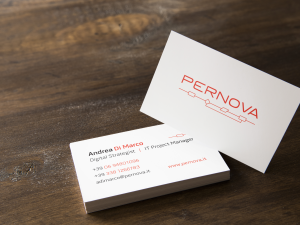 Pernova Logo and Business card